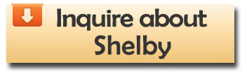 inquire_about_shelby.png